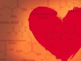 Descubre todo lo que hay detrás de la química en el coito