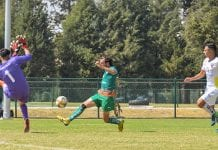 Avanza firme la Tribu Verde en balonvolea, baloncesto y futbol soccer